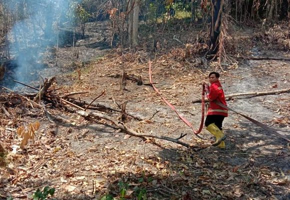 Kebakaran Lahan Bone Bolango