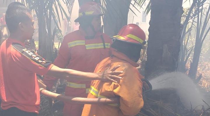 Kebakaran Lahan di Dulomo